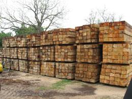Hardwood Skids